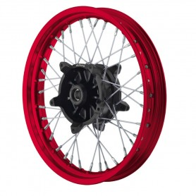 Roues ALPINA ALPINA ROUES AV A RAYONS TUBELESS 2.15 X 21 IM-TB401